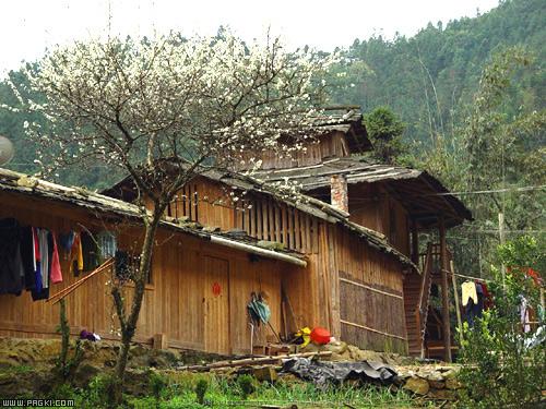 瑶族木屋设计图
